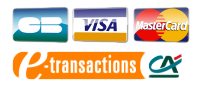 CB, VISA, Mastercard via Paybox