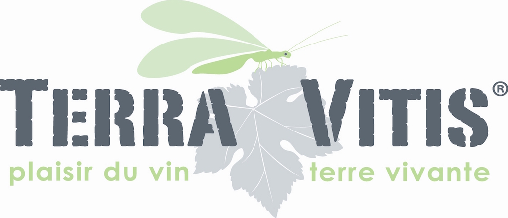 Terra Vitis, la signature de vignerons français qui respectent la nature, les hommes et les vins